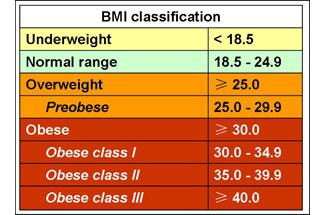 obesity and bmi deconstructed research report hps111